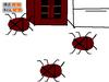 Scratch119521281