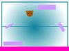 Scratch131976868